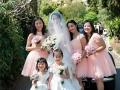 Weddings 133